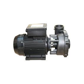 Executive Euro Pump - 3 HP, Dual Speed